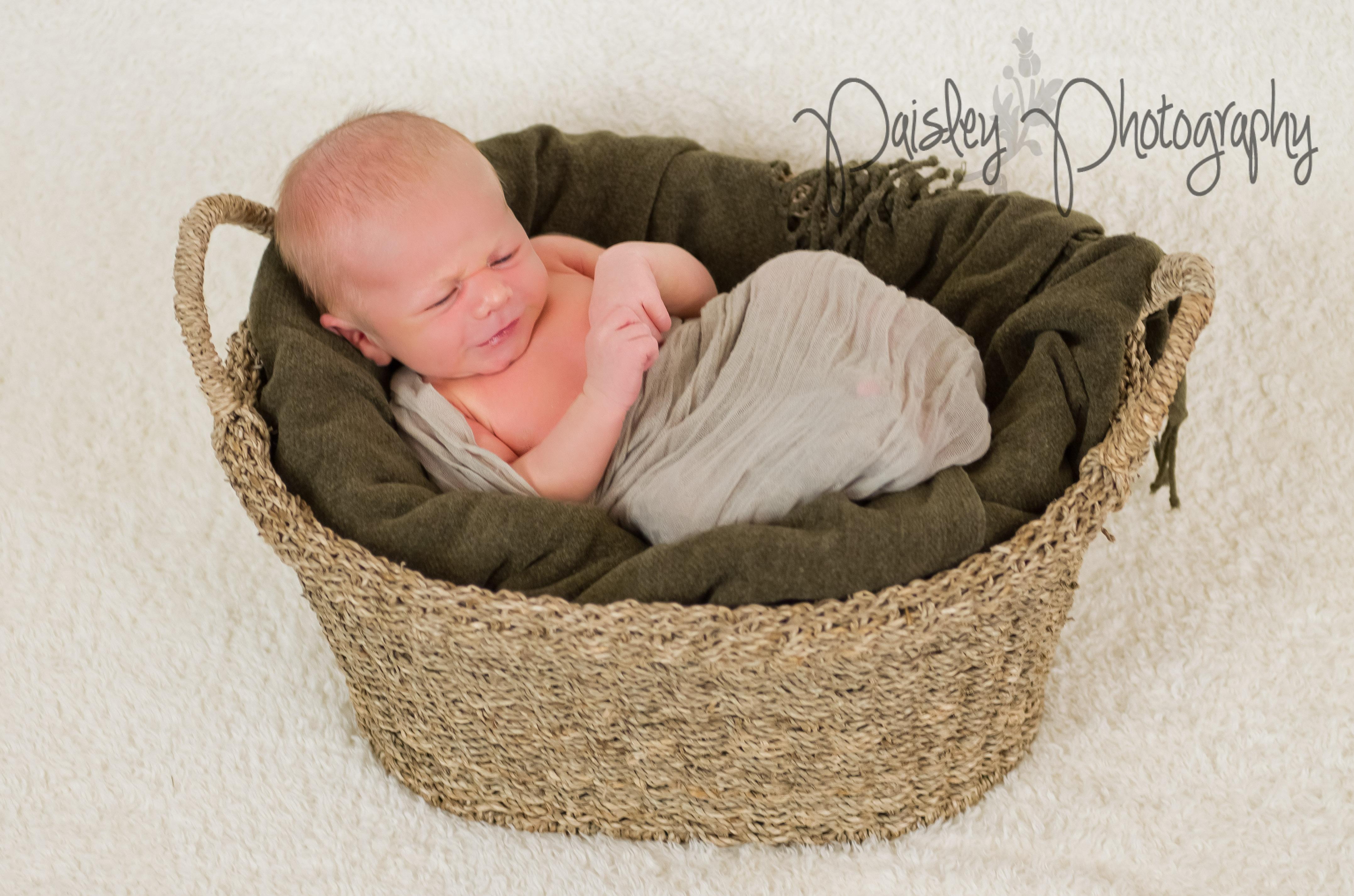 Baby in a basket calgary newborn photos