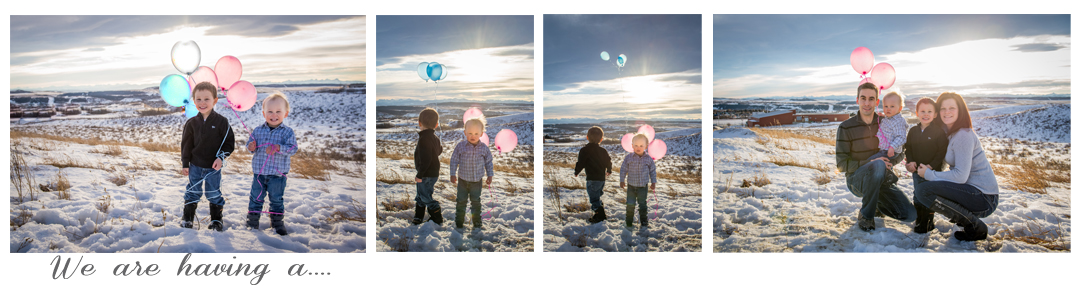 Gender Reveal Photos, Baby announcement Photography, Cochrane Family Photographer, Family Photography, Gender Photography, Calgary family Photographer