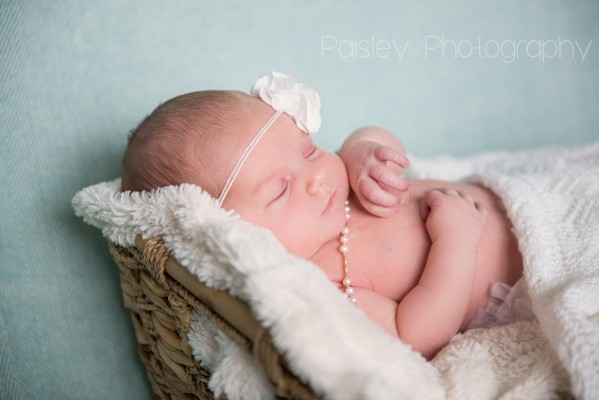 Baby Girl Everly – Calgary Family Photographer