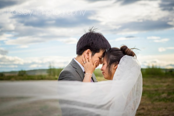 C+L's First Anniversary Wedding Photography –  Calgary Wedding Photography