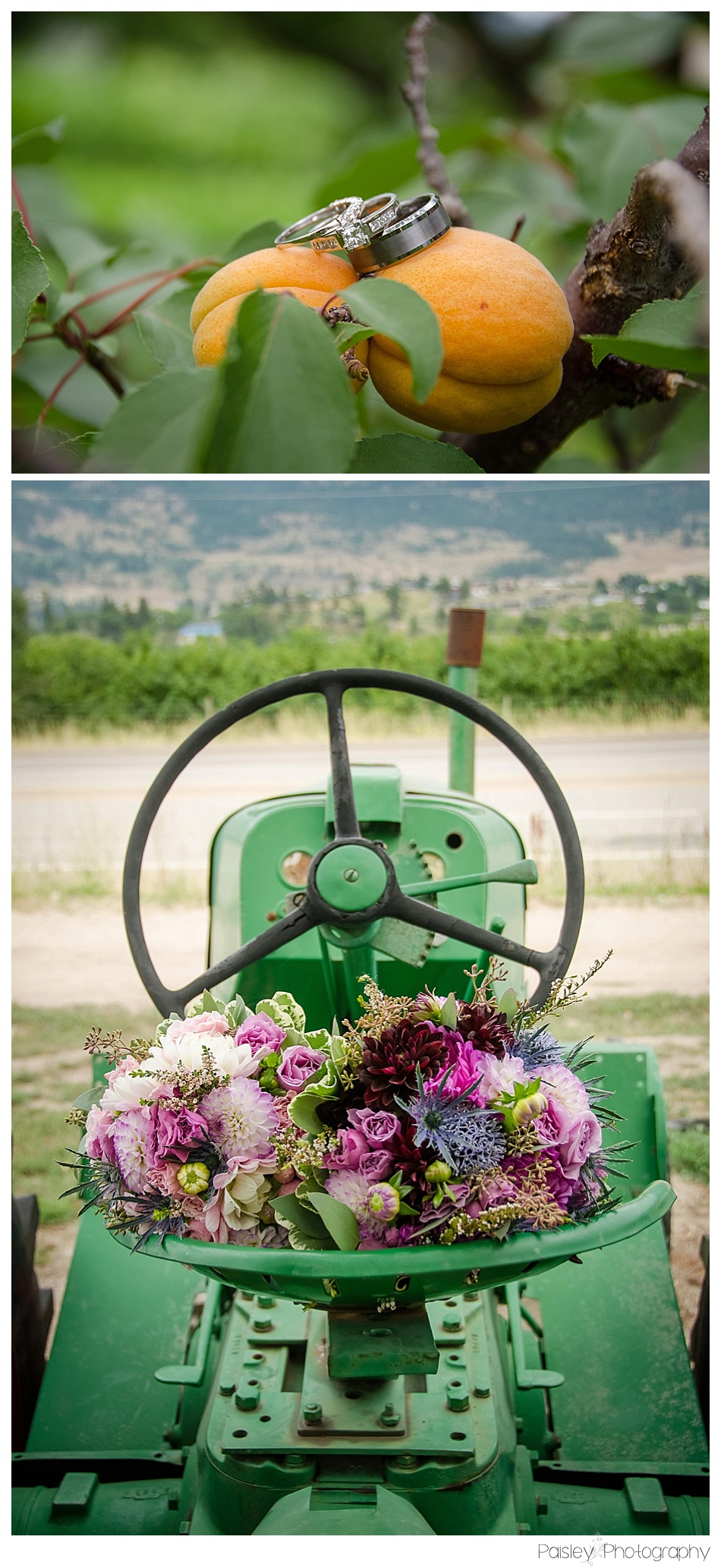 Orchard Wedding, Wedding Rings, Country Chic Wedding Photography, Orchard Wedding Photography, Country Wedding Details, Calgary Wedding Photography, Kelowna Wedding Photographer, Kelowna Wedding, Vernon Wedding Photographer, Okanagan Wedding Photographer