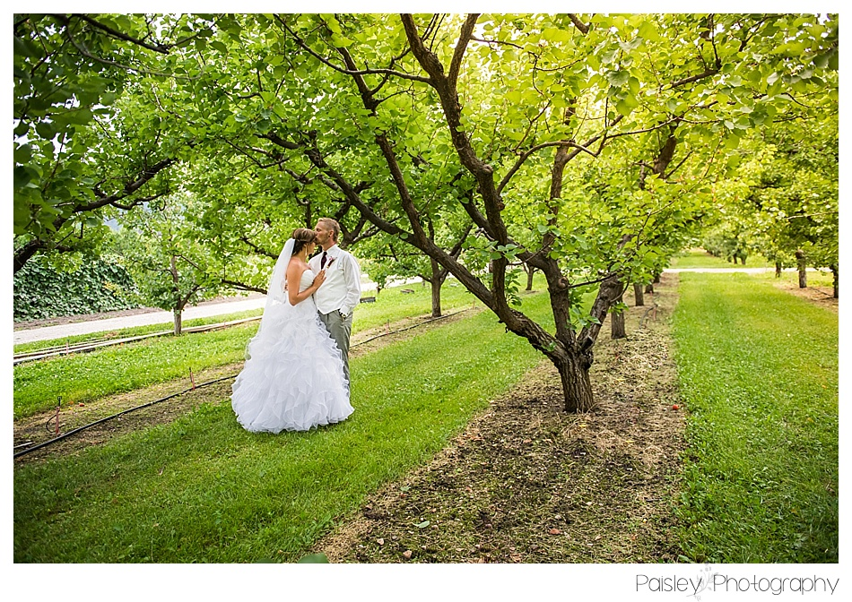 Orchard Wedding Kelowna BC