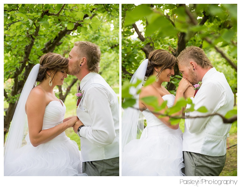 Sweet Kisses Kelowna Wedding Photos, Kelowna Wedding Photographers, Calgary Wedding Photographer, Cochrane Wedding Photographer, Orchard Wedding, Apple Orchard Wedding, Kelowna Wedding, Vernon Wedding,