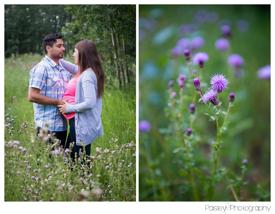 Maternity Photography, Field Maternity Photography, Calgary maternity Photos, Cochrane Maternity Photos, Maternity Photographer Calgary, Southern Alberta Maternity Photography, Wild Flower Maternity, Forest Maternity Photography,
