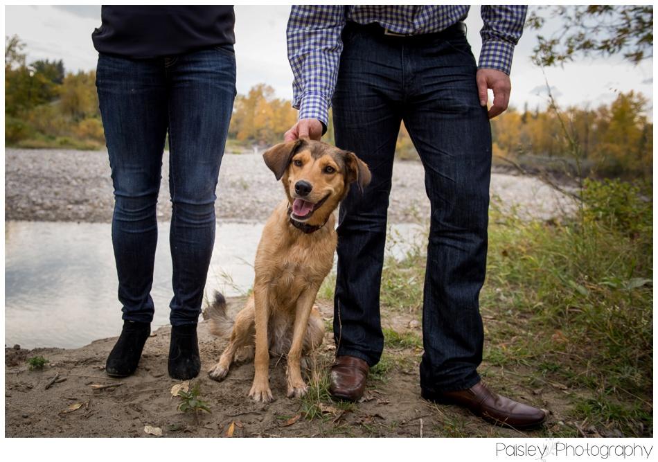 Fall Family Photography, Calgary Fall Family Photos, Calgary Family Photography, Calgary Family Photographer, Family Photos with Dog, Cochrane Family Photographer, Cochrane Family Photography, Family Photography with Puppy, Family Photography,