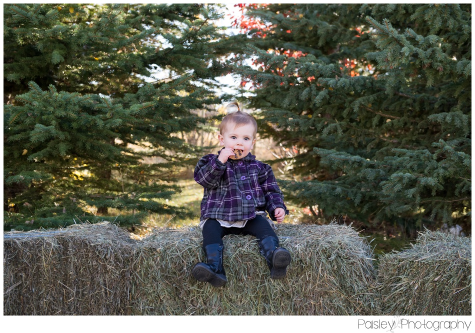 Autumn Family Photography, Calgary Family Photos, Calgary Family Photographer, Cochrane Family Photos, Cochrane Family Photographer, Extended Family Photography, Extended Family Photographer, Family Photography, Fall Family Photography, Country Family Photos, Farm Family Photography