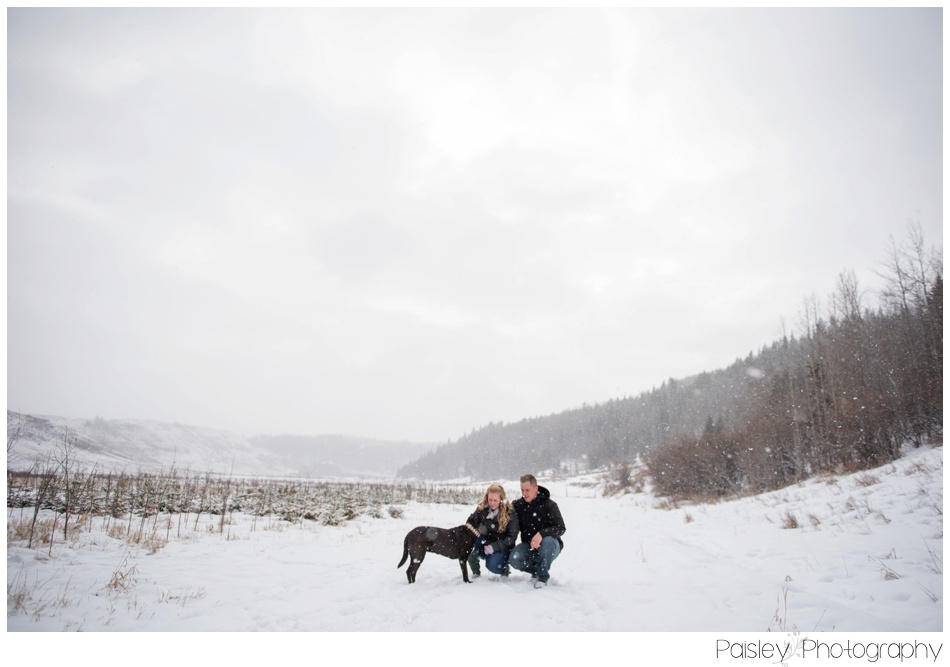 Snowy Engagement Photography, Winter Engagement Photography, Southern Alberta Engagement Photographer, Cochrane Engagement Photographer, Cochrane Engagement Photography, Big Hill Springs Park Engagement Photos, Big Hill Springs Park