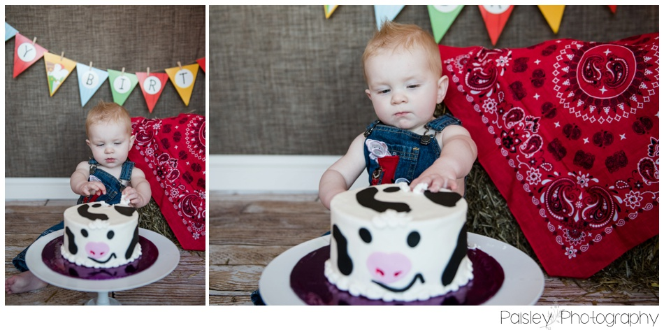Cowboy Theme Cake Smash, Calgary Cake Smash Photography