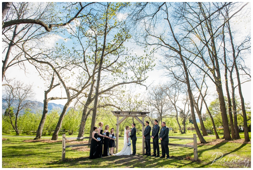 Gellatly Nut Farm Wedding Photographer