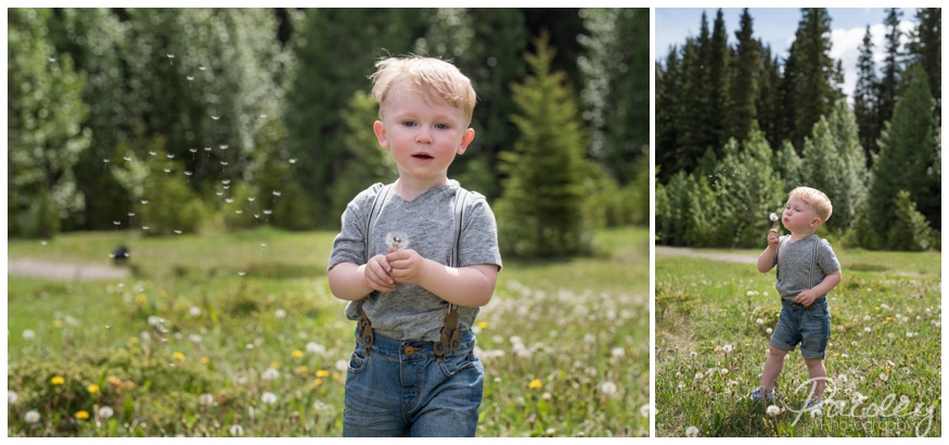 Spring Family Photography in the Mountains