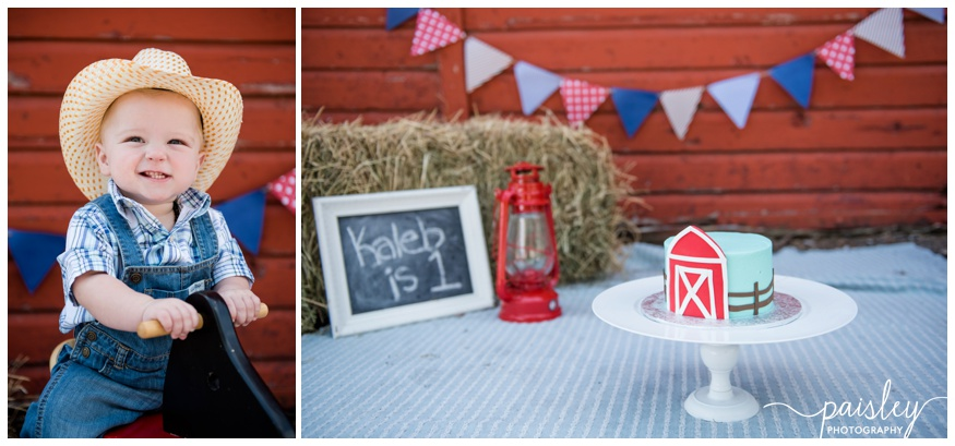 Outdoor Barn Yard Cake Smash Photos