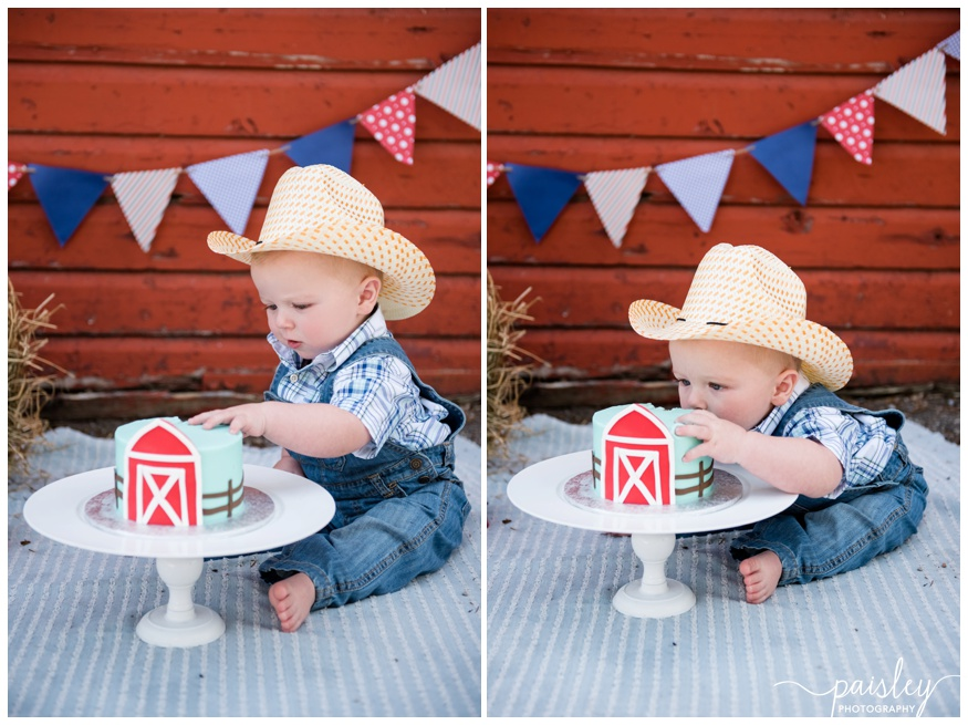 Barn Yard Themed First Birthday