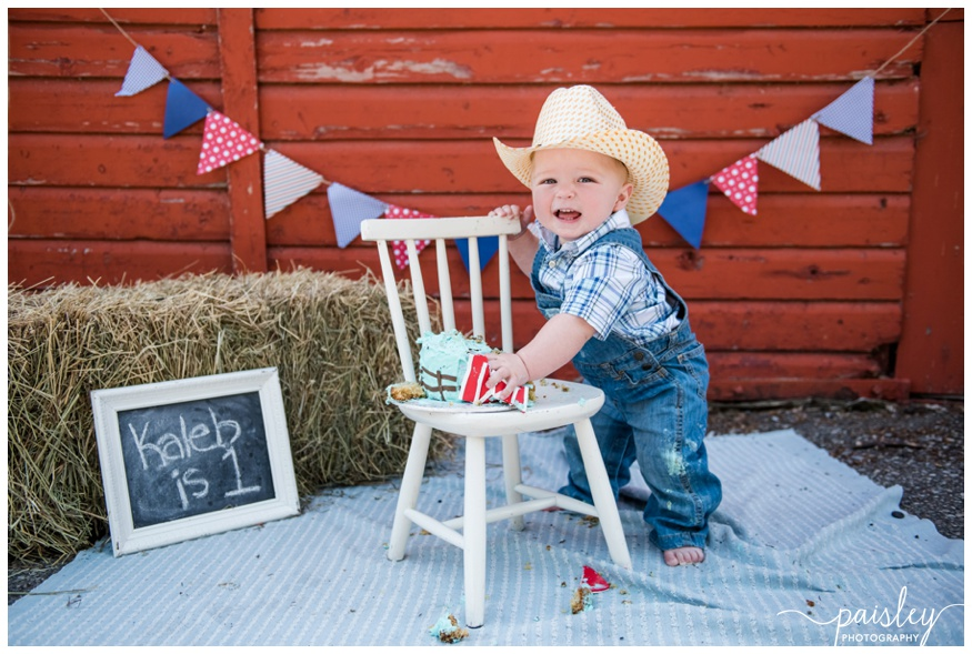 Red Barn Cake Smash Photographer Calgary