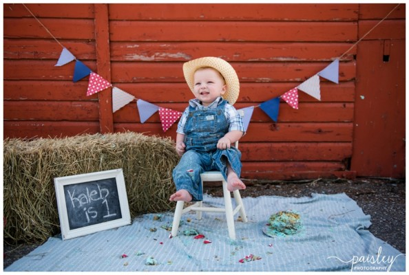 Calgary Cake Smash Photography- Kaleb's Barn Yard Theme First Birthday