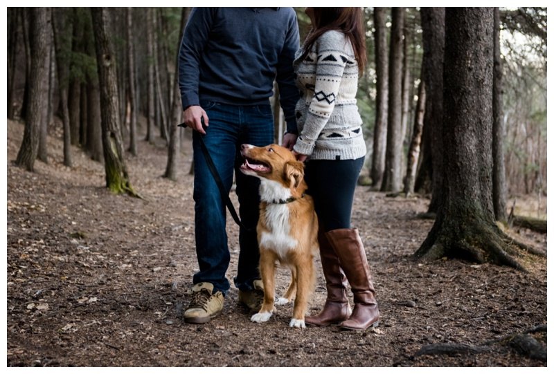 Dog in Engagement Photography