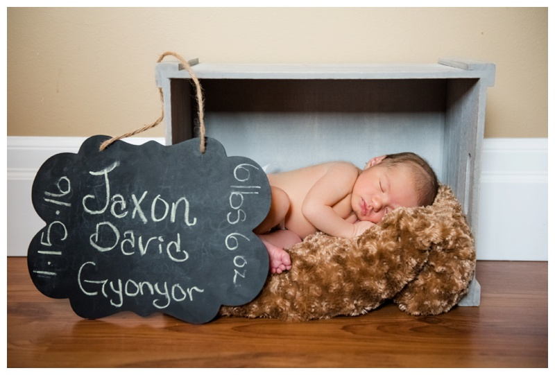 Newborn Photographers Calgary