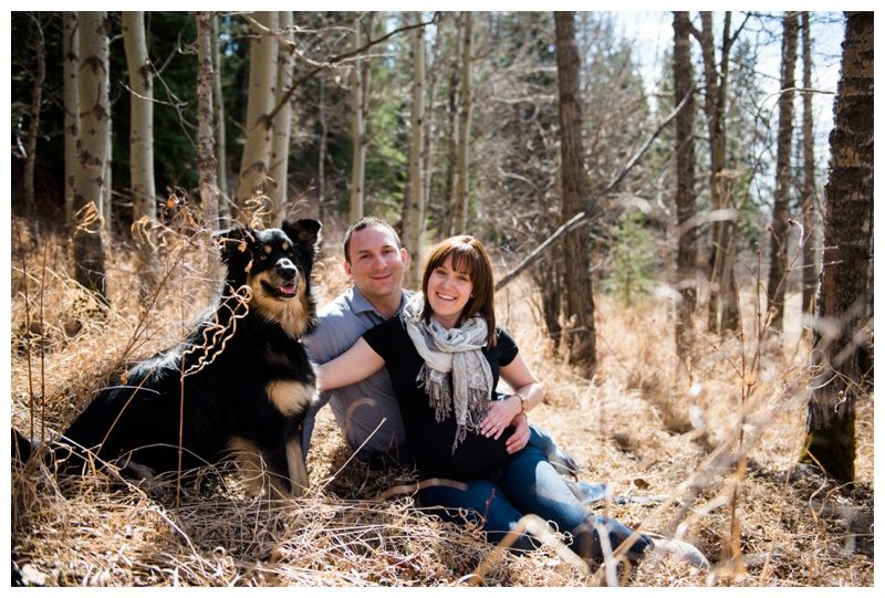 Maternity Photography with Dog Cochrane