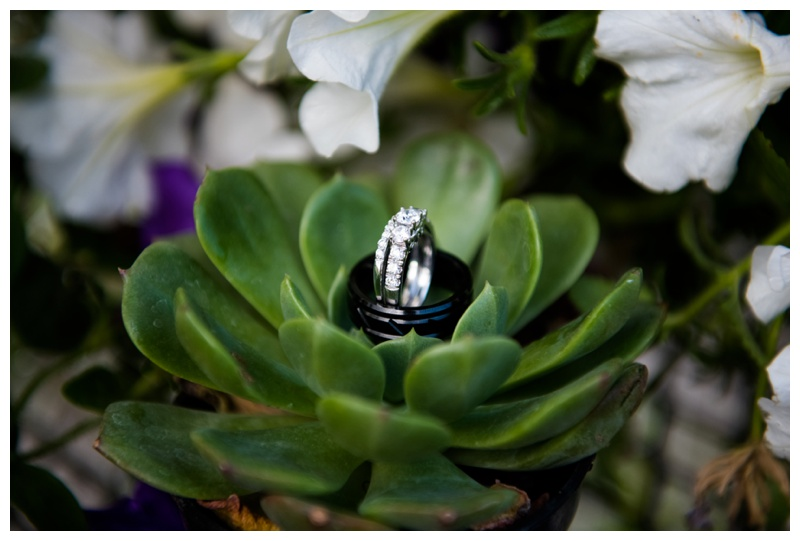 Wedding Rings in Succulents Wedding Photography