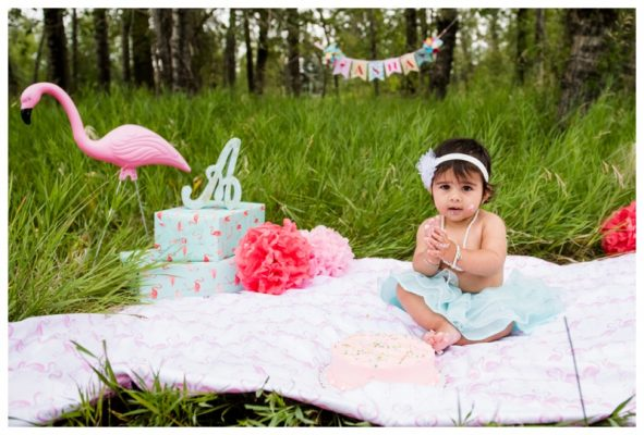Calgary Carburn Park Cake Smash Session – Asha's Calgary Cake Smash