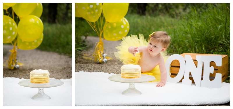 Pearce Estate Park first Birthday Cake Smash
