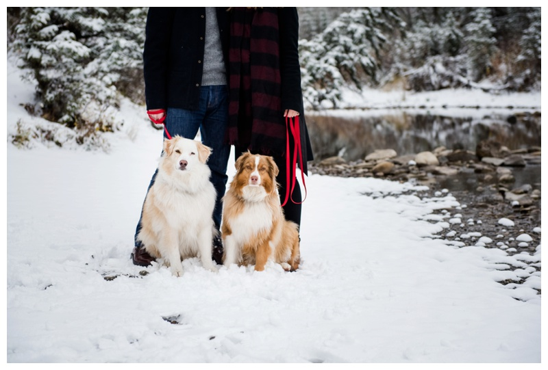 Bragg Creek Couple Photography