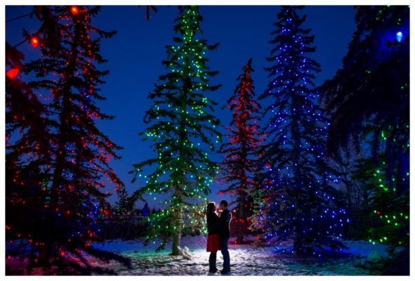 Spruce Meadows Engagement Session – Calgary Christmas Light Engagement Photos
