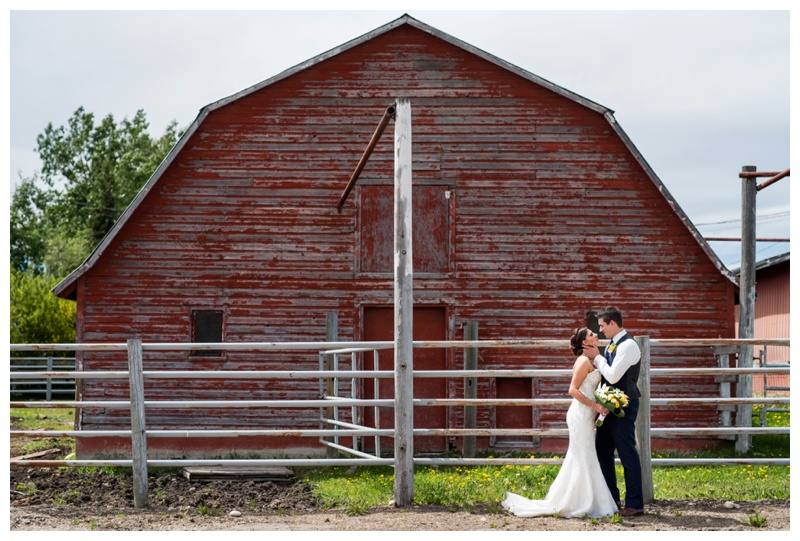 Barn Wedding - Olds Wedding Photographer