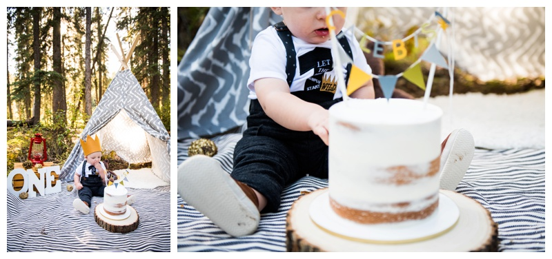 Where The Wild Things Are Cake Smash Photos