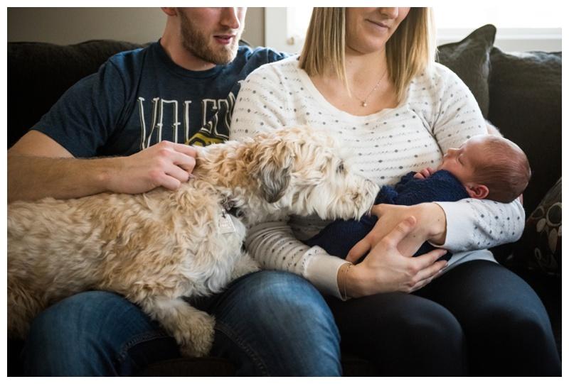 At Home Newborn Photographer Cochrane