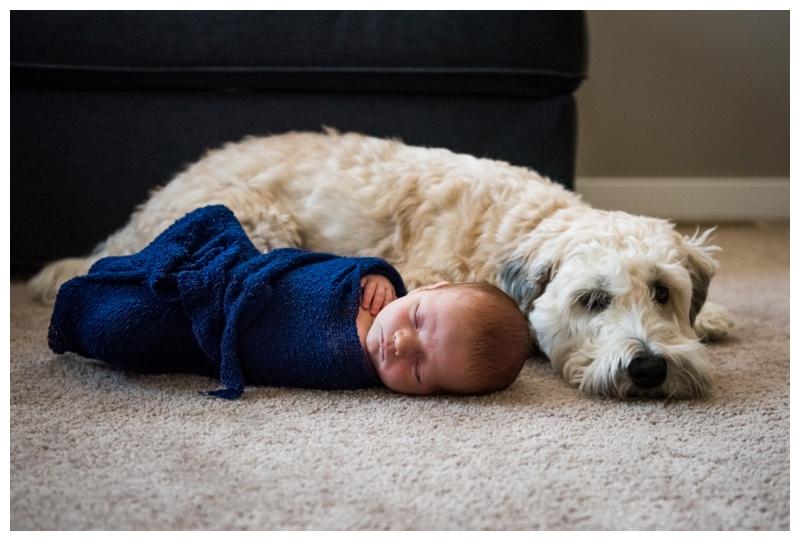 Cochrane Newborn Photographers