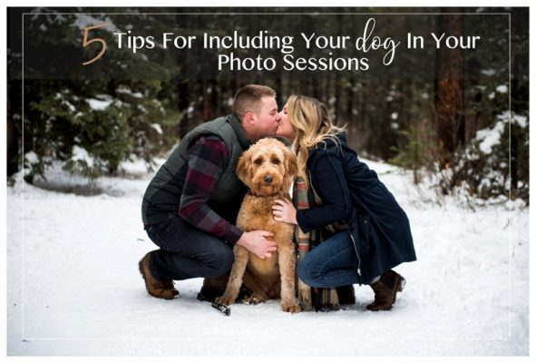 5 Tips For Including Your Dog In Your Photo Sessions | Calgary Engagement Photographer