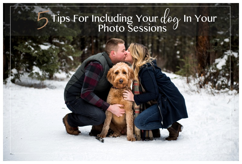 5 Tips For Including Your Dog In Your Photography Sessions