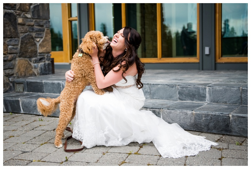 5 Tips For Including Your Dog In Your Wedding