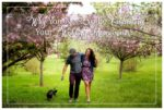 Why You Need to be Celebrating your Wedding Anniversaries | Calgary Photographer