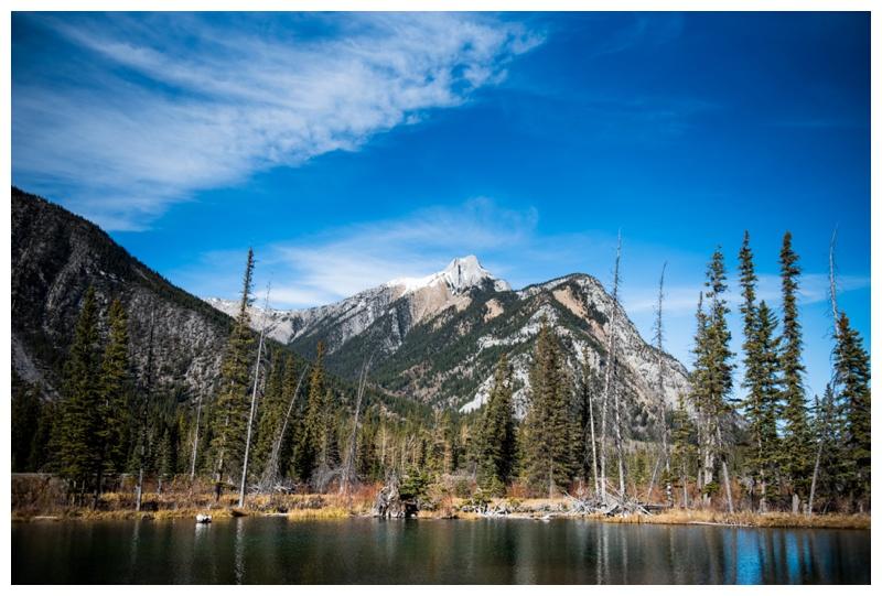 Mount Loretta Ponds