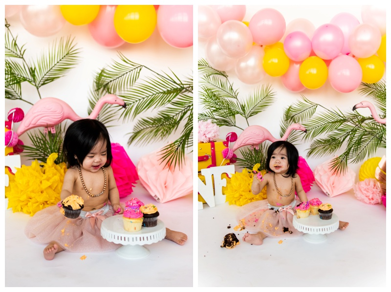 Flamingo Themed Cake Smash - Calgary Cake Smash Photos
