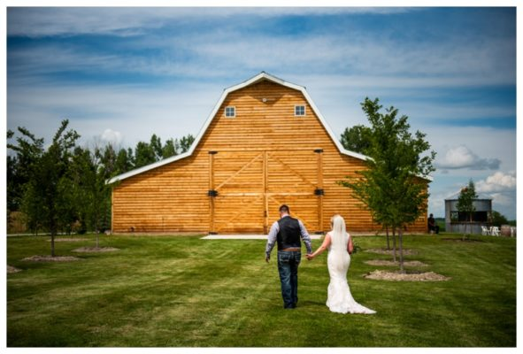 Summer Willow Lane Barn Wedding | Tyler & Jenna | Olds Wedding Photographer