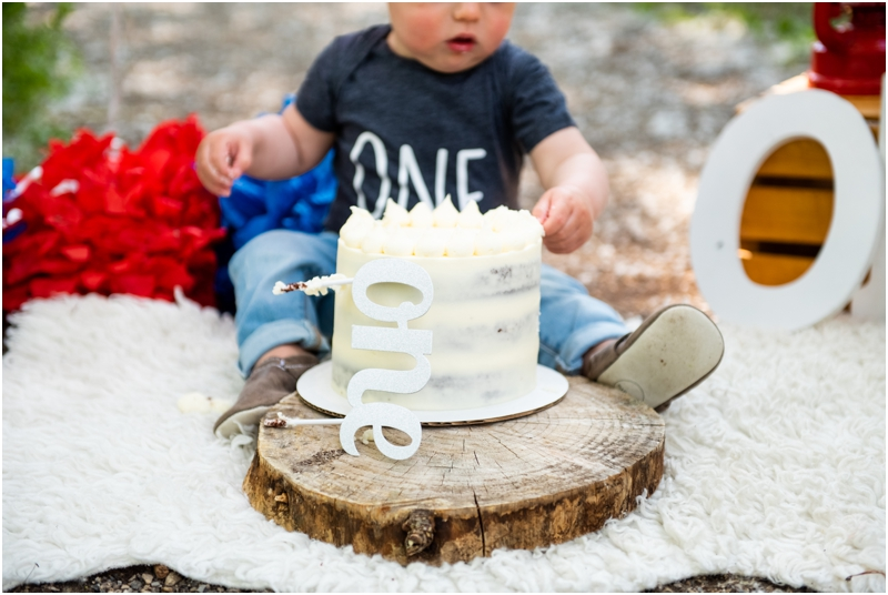 1st Birthday Cake Smash Photography Calgary
