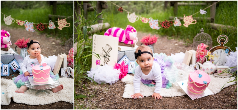 Calgary 1st Birthday Cake Smash Photography - Alice in Wonderland