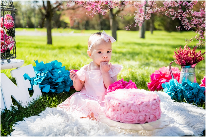 Calgary Cherry Blossom Cake Smash Photographer