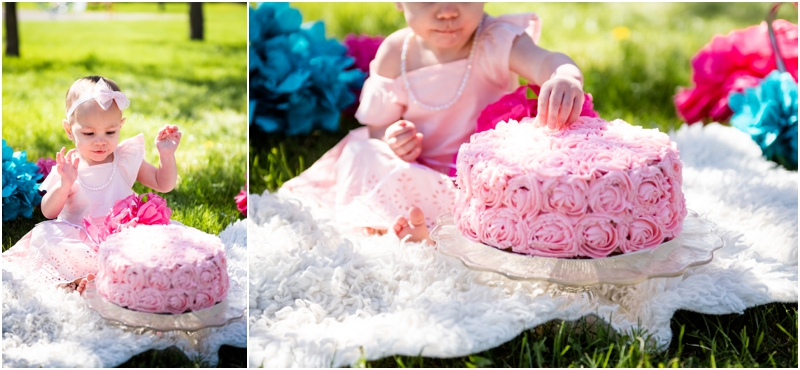Calgary Cherry Blossom Cake Smash Photography