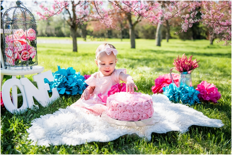 Calgary Cherry Blossom Cake Smash Session