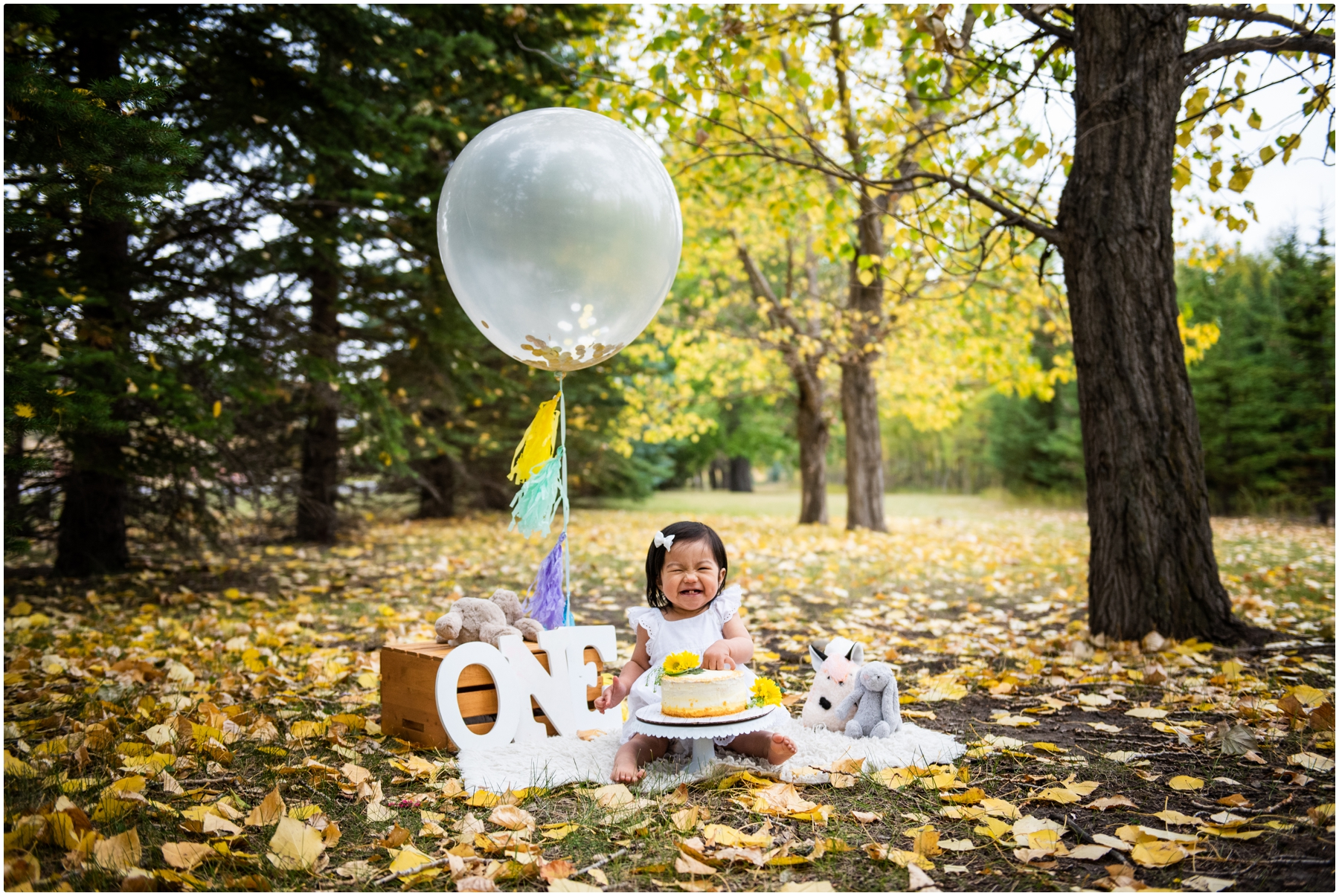 Calgary Autumn Cake Smash Photography
