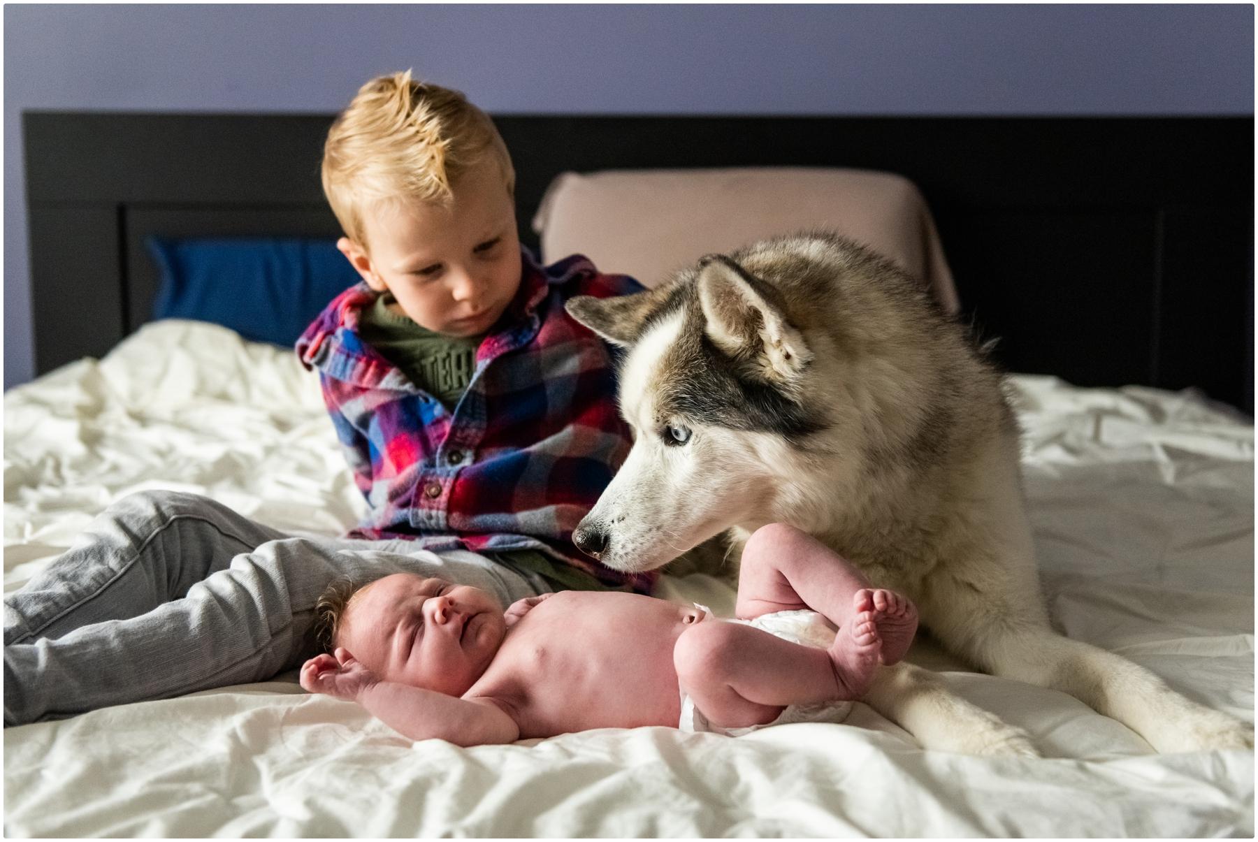 Calgary Newborn Photography- Calgary Family At Home Newborn Photos