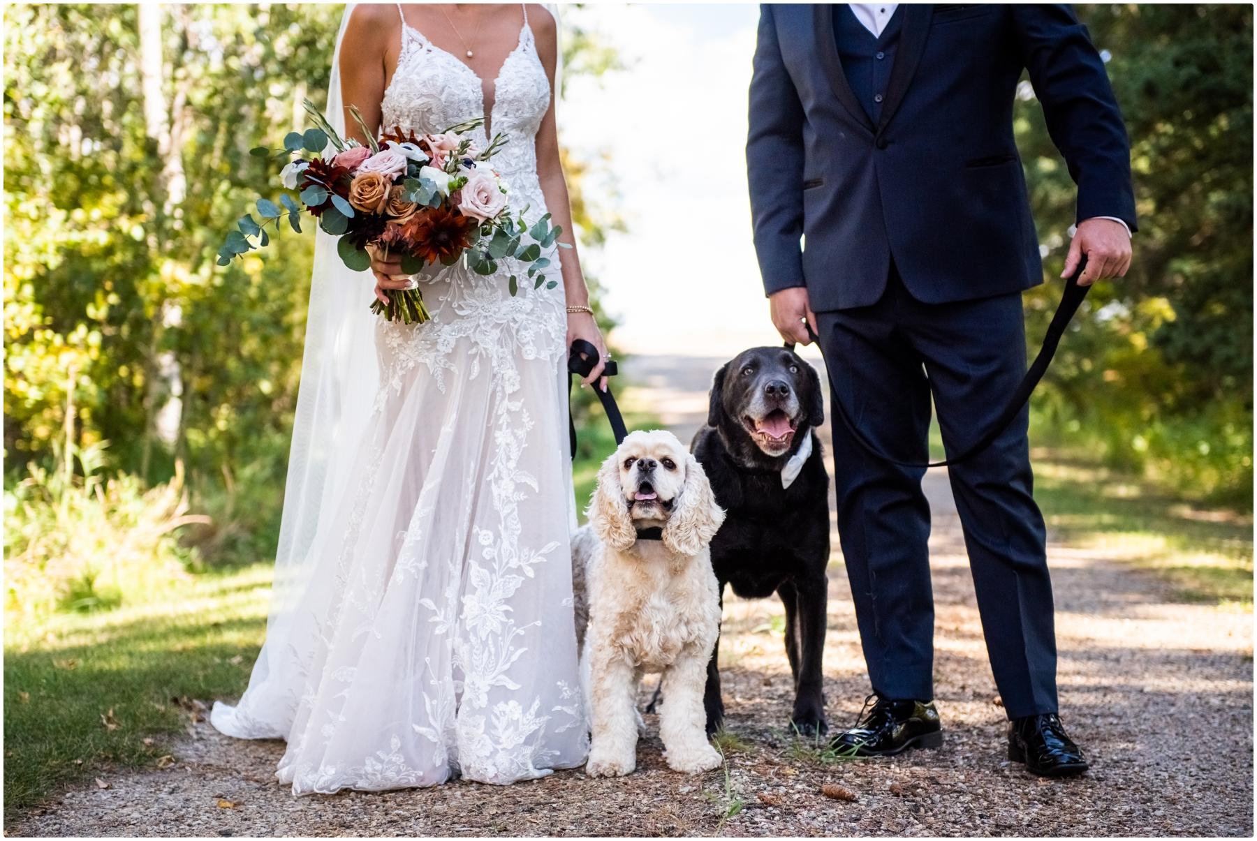Sweet Haven Bar Wedding Photography - Fall Barn Wedding