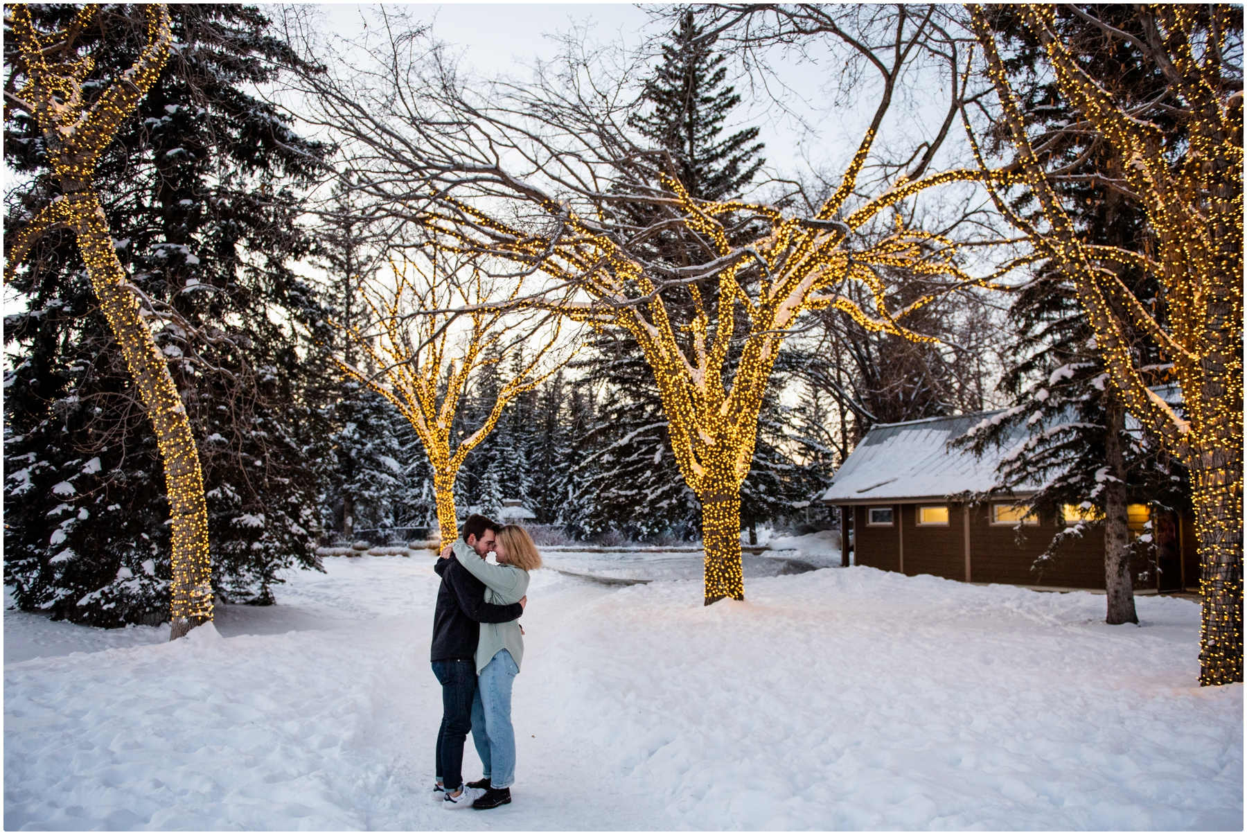 Calgary Bowness Park Winter Engagement Photos