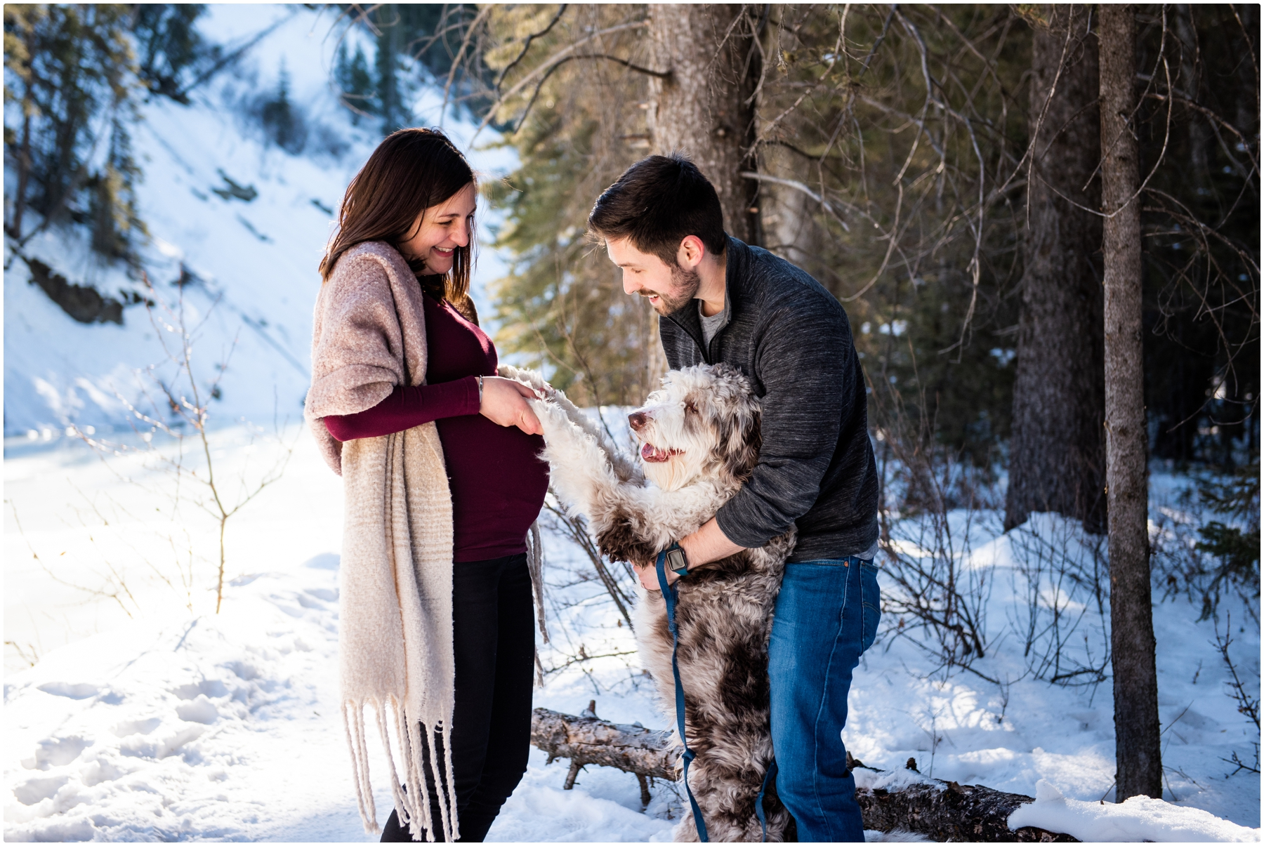 Calgary Winter Maternity Photography Fish Creek Park