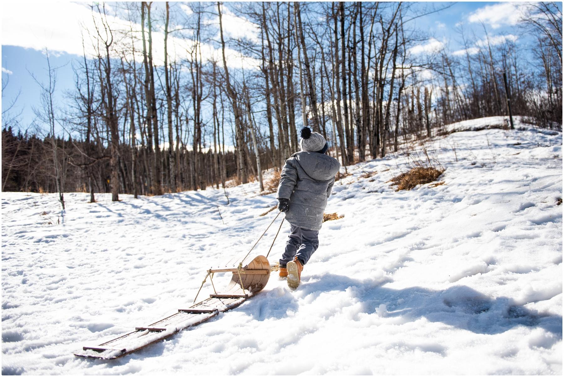Calgary Snowball Fight Family Photographer
