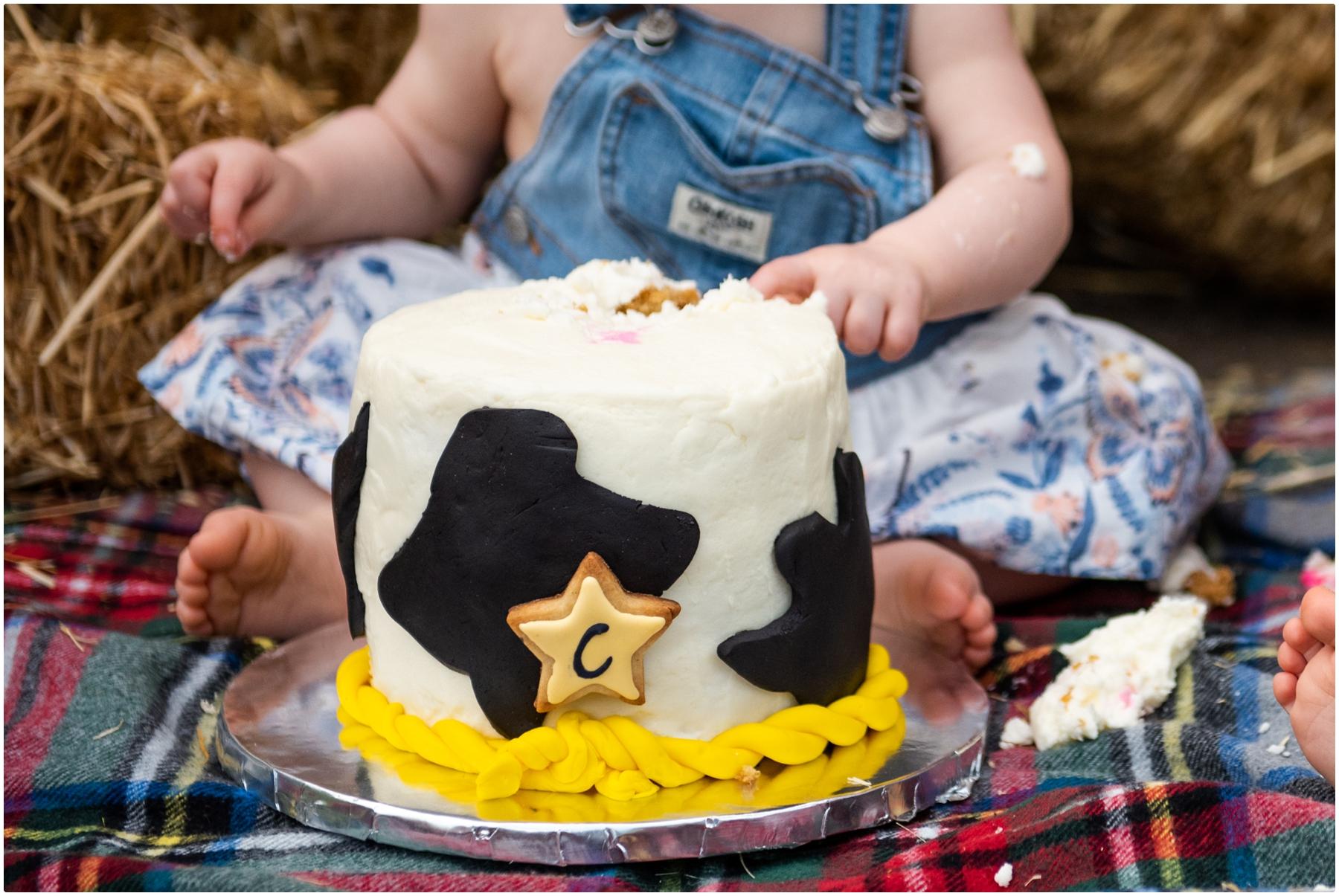 Calgary Cake Smash Photos- Barn Yard 1st Birthday Cake Smash