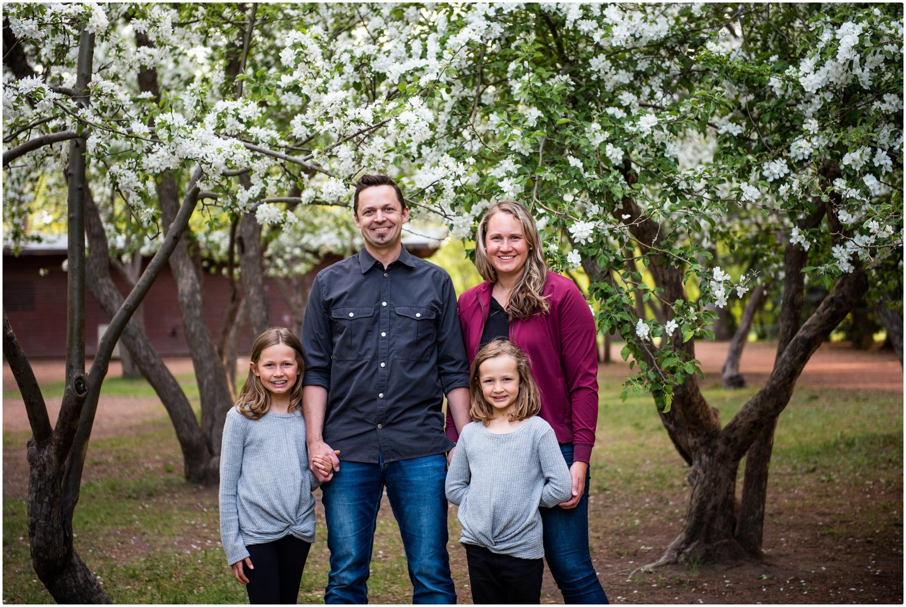 Cherry Blossom Family Photography Calgary